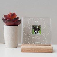 Mini Personalised Paw Photograph Display Frame