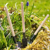 Mini Set Of Garden Tools