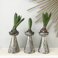 Silver Mercury Glass Bulb Forcing Vase