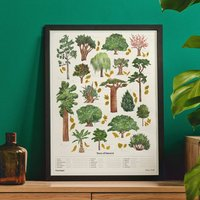The Chartologist Trees Scratch Off Print