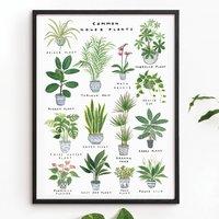 'House Plants' Art Print