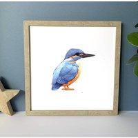 Illustrated Kingfisher Print
