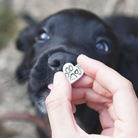 Personalised Pet Paw Print Silver Charm, Silver