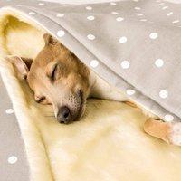 Faux Fur Fleece Comforter
