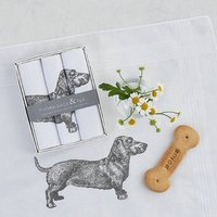 Dog Hanky Box