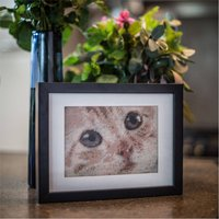 Personalised Cat Tapestry Kit From Your Favourite Photo, White/Sepia