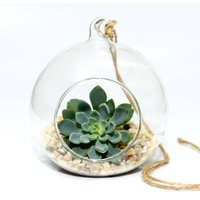 Hanging Glass Bauble Succulent Terrarium Kit