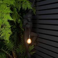 Hanging Monkey Indoor / Outdoor Light // Louie