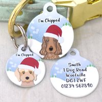 Personalised Christmas Santa Snow Dog ID Tag