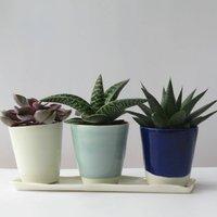 Set Of Three Window Sill Planters