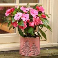 Coral Pink Fern Ceramic Plant Pot