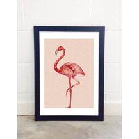 Flamingo By Studio Cockatoo
