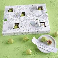Arctic Animals Chocolate Sprout Advent Calendar