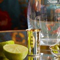Silver Shot Glass