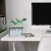Desktop Plant Terrarium With Wooden Stand