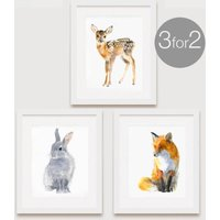 Animal Print Set, Set Of Three For The Price Of Two