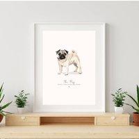 Pug Illustrated Print