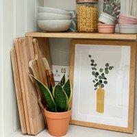 Eucalyptus Plant Pot Art Print