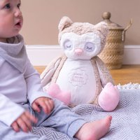 Personalised Owl Childrens Soft Toy