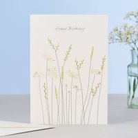 Daisies And Grass Birthday Card