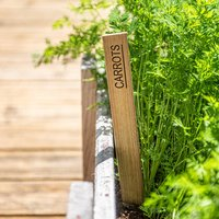 Personalised Wooden Allotment Plant Labels