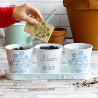 Personalised Mother's Day Pots And Daisy Seeds