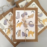 Cats Luxury Boxed Notecard Set