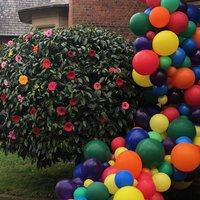 Balloon Garland /Arch Kit