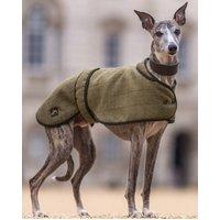 Whippet Dog Coat, Mustard