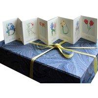 Birthday Concertina Card And Decoration