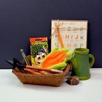 Childrens Grow Your Own Cress Gardening Set