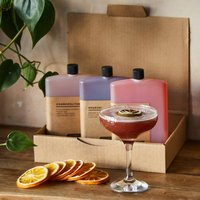 Ten Aperitif Cocktails And Garnish Gift Box