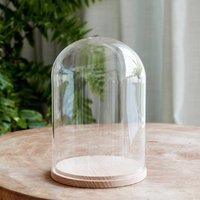 Minimal Glass Display Dome With Beech Base