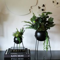 Set Of Black Metal Planters With Plants