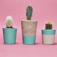 Set Of Three Turquoise Concrete Pots W/Cacti