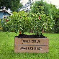 Personalised Planter Crate With Chilli Seeds, Silver/Ivory/Pink
