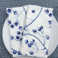 Blue And White Cotton Napkins