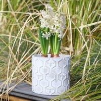 Hambledon Honeycomb Patterned Concrete Planter