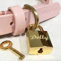 Personalised Pet Name Square Padlock Dog Tag, Gold/Silver
