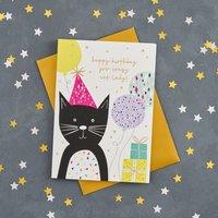 Happy Birthday Crazy Cat Lady Card