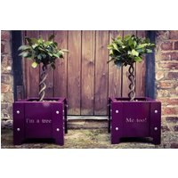Im A Tree…Me Too Metal Doorstep Planters, White/Aubergine/English Green