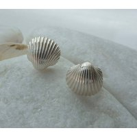 Silver Tiny Shell Stud Earring, Silver