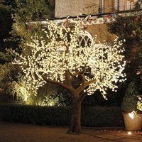 Illuminated Decorative LED Tree, Pale Pink/Pink/White