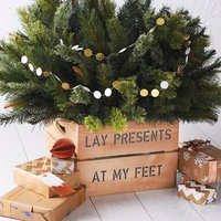 Personalised Christmas Tree Planter Crate, Ivory/Green/Red