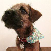 Dog Neckerchief Bandana Liberty Print, Red/Pink/Green