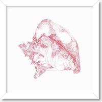 Pink Sea Shell Print, Pink
