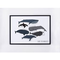 Save The Whales Illustrated Print