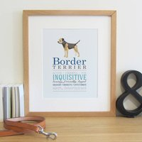 Border Terrier Dog Breed Print
