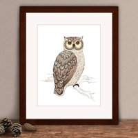 Limited Edition Owl Print