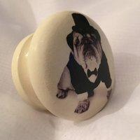 Bulldog Mortice Door Drawer Cupboard Knob